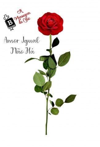 amor incomparável - linda mensagem de salvação - video com rosa vermelha simbolizando Jesus na cruz