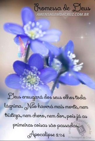 Mensagem-de -Luto-Deus Enxugará Todas as Suas Lágrimas - Apocalipse-21-4