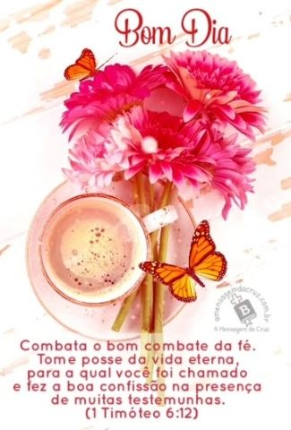 Bom Combate - Versiculo do Dia - I timoteo 6_12 - Mensagem de Bom Dia